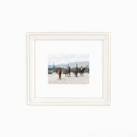 Horse photo white frame white wall