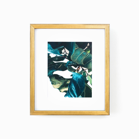 Gold frame with green leaf photo on white wall