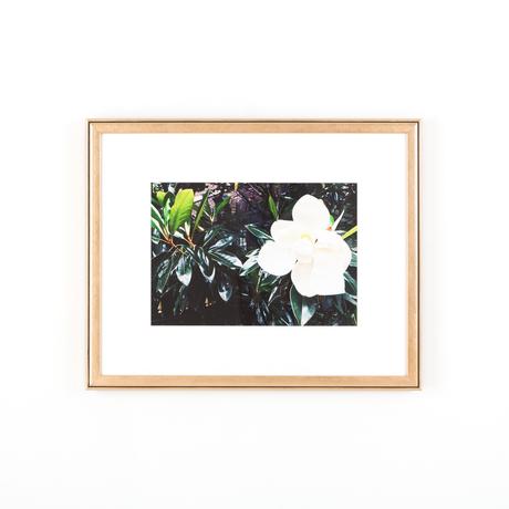 Flower art rose gold frame white wall