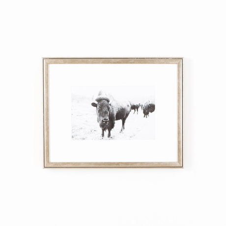 Silver frame buffalo art white wall