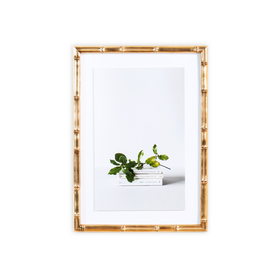 green leaves on books on a white wall in a lucia blush bamboo frame