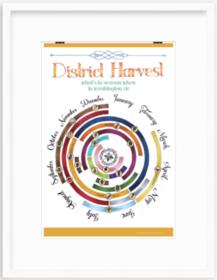 Large Harvest CBC Print in Irvine Slim