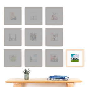 The Mini Grid: Single Frame